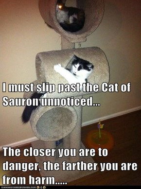 I must slip past the Cat of Sauron unnoticed... The closer you are to danger, the farther you are from harm.....
