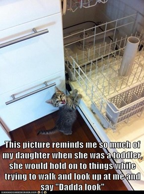 Kittens and Kids: Not So Different