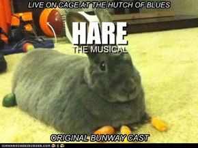 Hurry, Tickets Will Sell Out Rabbitly