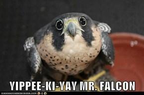 YIPPEE-KI-YAY MR. FALCON
