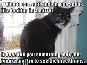 Trying to correctly judge yourself is like looking in a mirror.  It does tell you something, but you ignore and try to see the nice things.