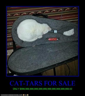 CAT-TARS FOR SALE