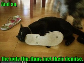 Kitty Does Not Approve of Your Fashion Sense