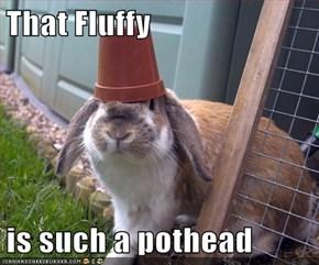 That Fluffy