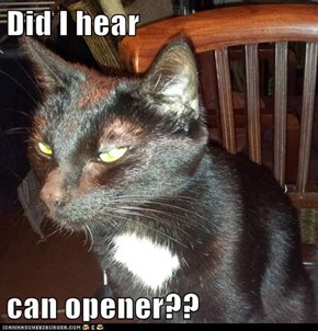 Did I hear  can opener??