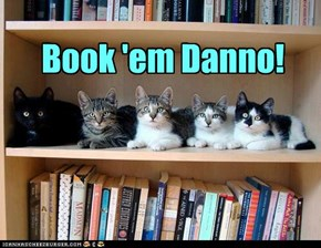 Book 'em Danno!