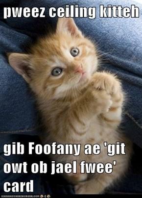 pweez ceiling kitteh  gib Foofany ae 'git owt ob jael fwee' card