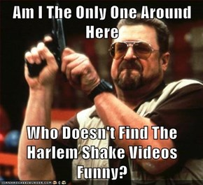 Am I The Only One Around Here  Who Doesn't Find The Harlem Shake Videos Funny?
