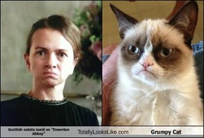 "Scottish estate maid on ""Downton Abbey"" Totally Looks Like Grumpy Cat"
