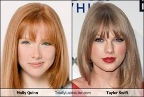Molly Quinn Totally Looks Like Taylor Swift