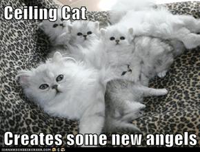 Cherubic Kittens