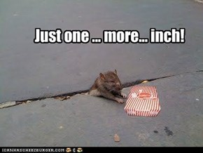 Just one ... more... inch!