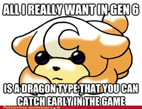 We All Love Dragon Type Pokemon