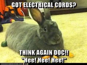 "GOT ELECTRICAL CORDS?  THINK AGAIN DOC!!                    ""Hee! Hee! Hee!"""