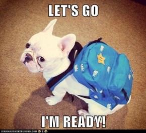 LET'S GO  I'M READY!