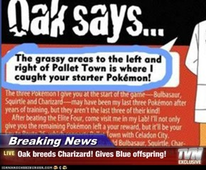 Breaking News - Oak breeds Charizard! Gives Blue offspring!