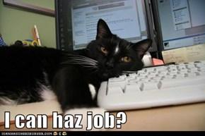 I can haz job?