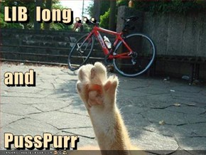 LIB  long . . . and PussPurr