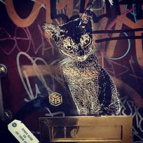 Kitty Street Art WIN