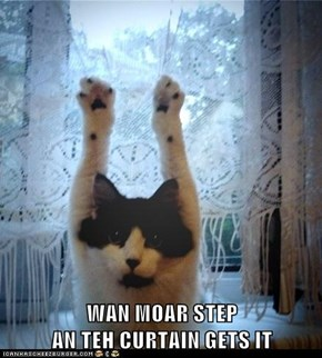 WAN MOAR STEP                                                      AN TEH CURTAIN GETS IT