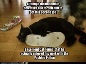 Basement Cat  found  that he actually enjoyed his work with the Fashion Police