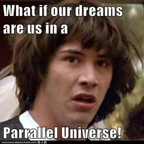 What if our dreams are us in a  Parrallel Universe!