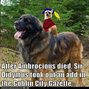 Atfer Ambrocious died, Sir Didymus took out an add in the Goblin City Gazette