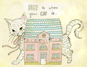 A Life Philosophy for Cat People