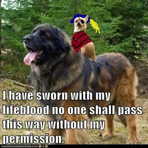 I have sworn with my lifeblood no one shall pass this way without my permission.
