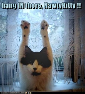 hang IN there, NawtyKitty !!