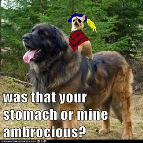 was that your stomach or mine ambrocious?