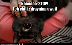 Noooooo, STOP!  Teh ebil iz drayning awai!