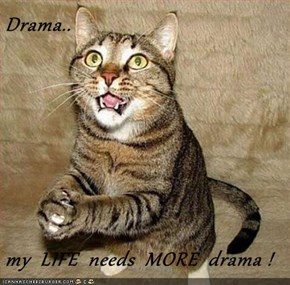 Drama..   my  LIFE  needs  MORE  drama !