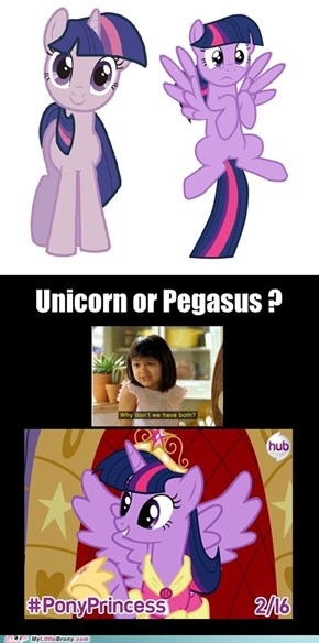 Alicorn Twilight: Deal With It