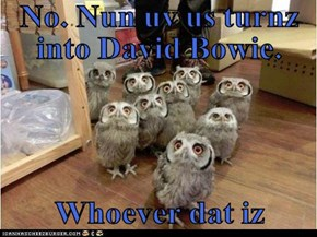 No. Nun uv us turnz into David Bowie.  Whoever dat iz