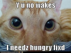 Y u no wakes  I needz hungry fixd