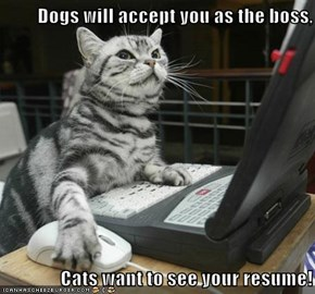 Dogs will accept you as the boss,  Cats want to see your resume!