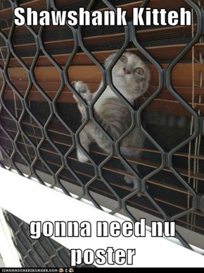Shawshank Kitteh  gonna need nu poster