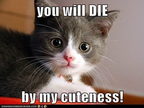 you will DIE  by my cuteness!