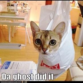 Da ghost did it