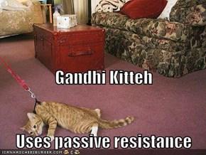 Gandhi Kitteh Uses passive resistance