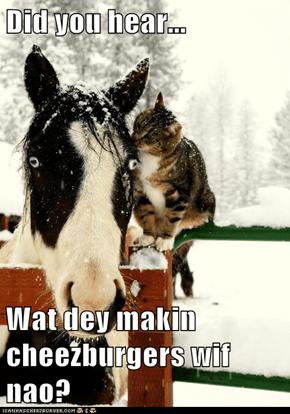 Did you hear...  Wat dey makin cheezburgers wif nao?