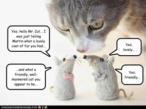 Nervous Mice