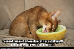 cannawt turn meh into melon cat if ai eatz it furst!!  consider yrself PWNED  hoomin!!111!