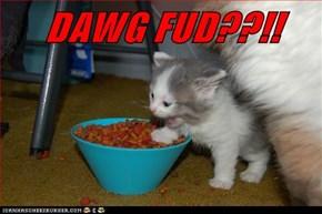 DAWG FUD??!!