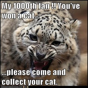 My 1000th fan !! You've won a cat...  ...please come and collect your cat.