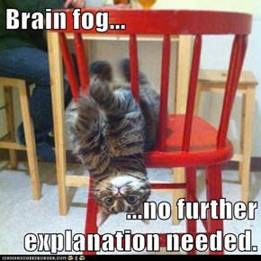 Brain fog...  ...no further explanation needed.
