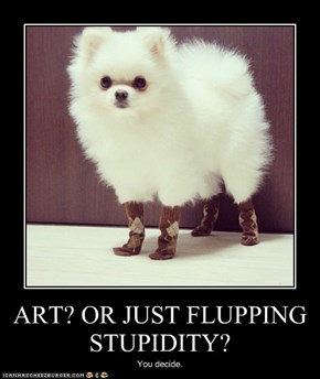 ART? OR JUST FLUPPING STUPIDITY?