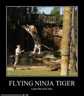 FLYING NINJA TIGER