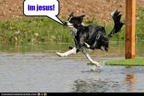 im jesus!